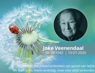 Joke Klein 2